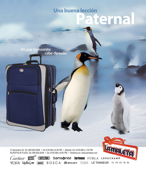samsonite-leccion.jpg